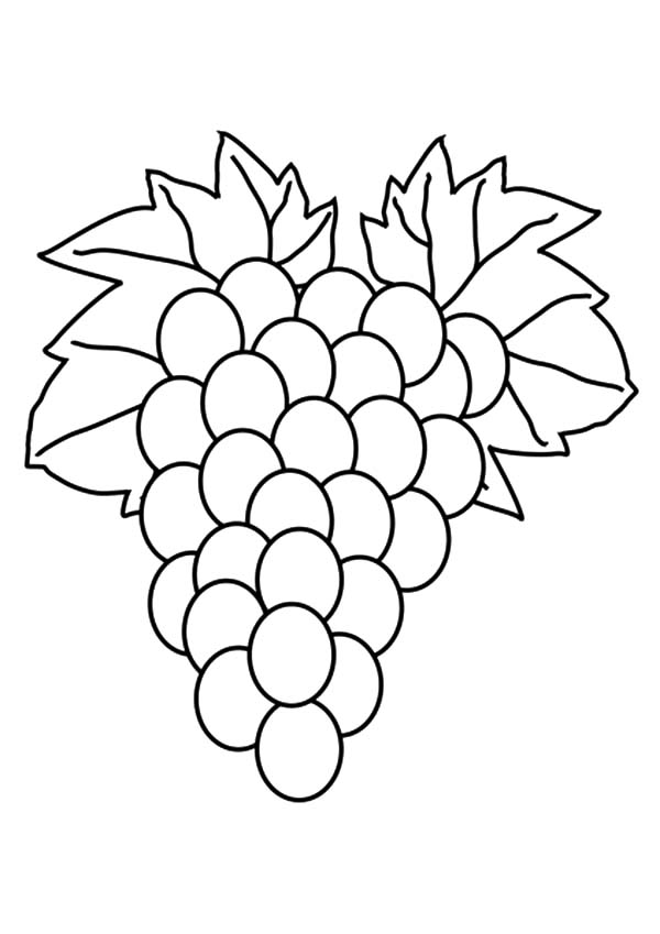 Grapes, : Fruit Grapes Coloring Pages