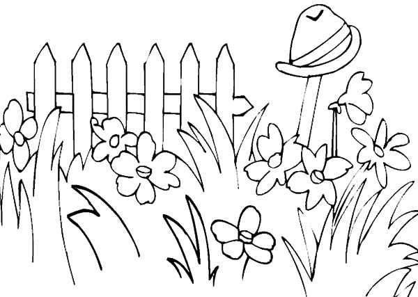 Garden, : Garden Full of Tall Grass Coloring Pages