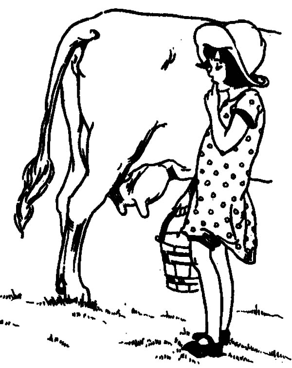 Milking Cow, : Girl Start to Milking Cow Coloring Pages