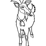 Goat, Goat Eating Apple Coloring Pages: Goat Eating Apple Coloring Pages
