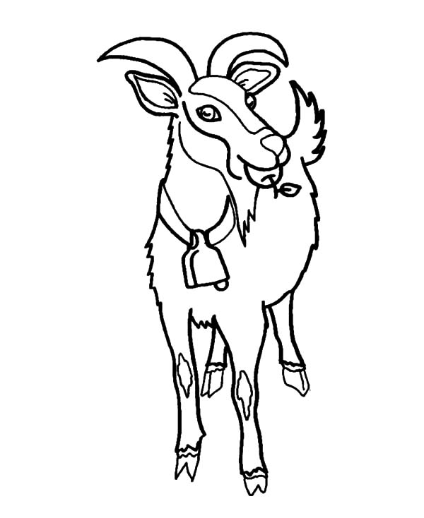 Goat, : Goat Eating Apple Coloring Pages