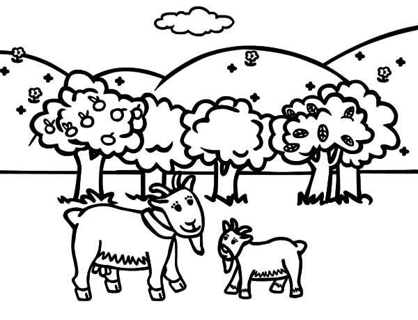 Goat, : Goat Tale Coloring Pages