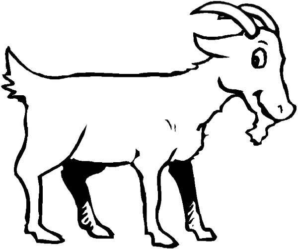 Goat, : Goat is Smiling Coloring Pages