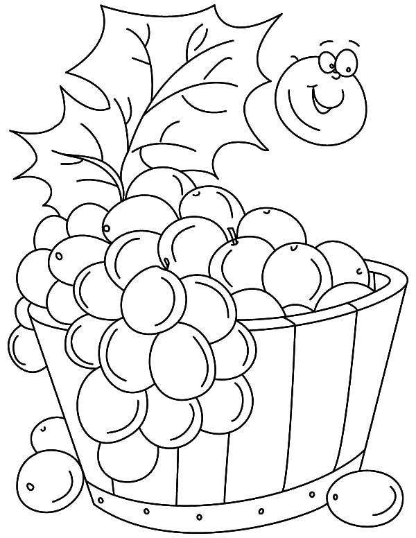 Grapes, : Grapes Bucket Coloring Pages