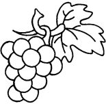 Grapes, Grapes Are Berry Family Coloring Pages: Grapes are Berry Family Coloring Pages