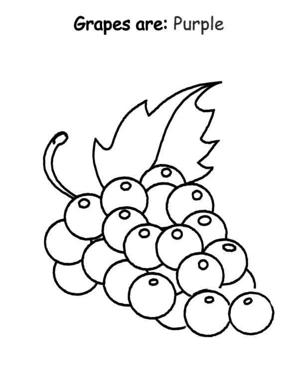 Grapes, : Grapes are Purple Coloring Pages