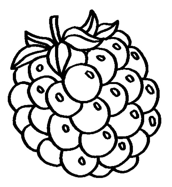 Grapes, : Grapes fo Fresh Juice Coloring Pages