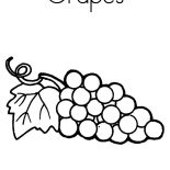 Grapes, Grapes For Raisins Coloring Pages: Grapes for Raisins Coloring Pages