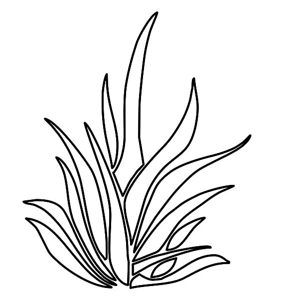 Grass, : Grass Coloring Pages for Kids
