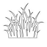 Grass, Grass Outline Coloring Pages: Grass Outline Coloring Pages
