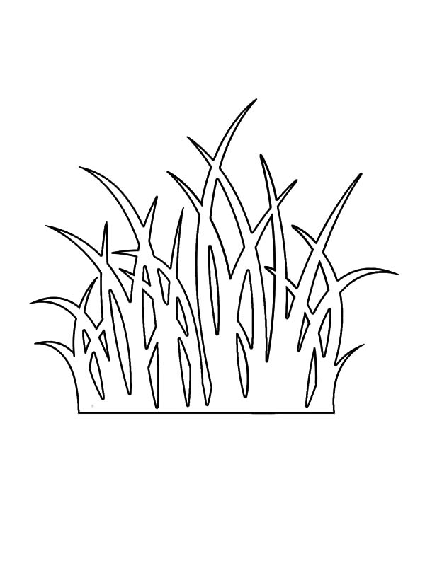 Grass, : Grass Outline Coloring Pages