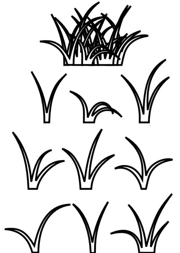 Grass, : Growing Grass Coloring Pages
