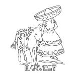 Mexican Donkey, Harvesting Fruit With Mexican Donkey Coloring Pages: Harvesting Fruit with Mexican Donkey Coloring Pages