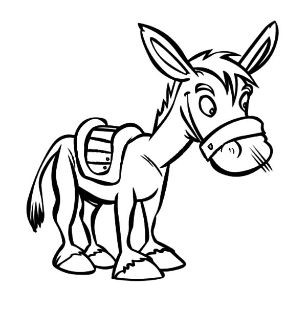 Mexican Donkey, : Little Mexican Donkey Coloring Pages
