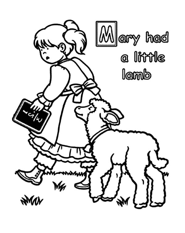 Sheep Colouring Page | Super coloring pages, Farm animal coloring ... | 753x600