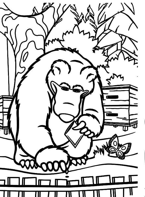 Masha And The Bear, : Masha and the Bear Put Carrot Seed to Hole Coloring Pages