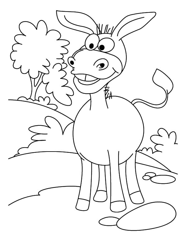 Mexican Donkey, : Mexican Donkey Big Grin Coloring Pages