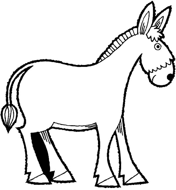 Mexican Donkey, : Mexican Donkey Coloring Pages for Kids