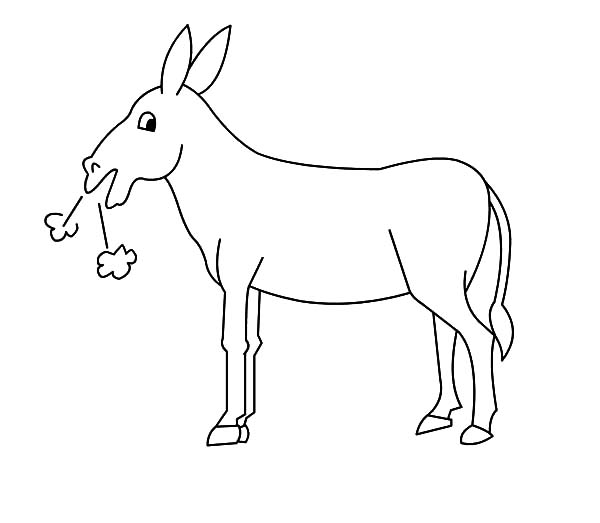 Mexican Donkey, : Mexican Donkey Hard Breathing Coloring Pages
