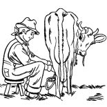 Milking Cow, Milking Cow Farming Activity Coloring Pages: Milking Cow Farming Activity Coloring Pages