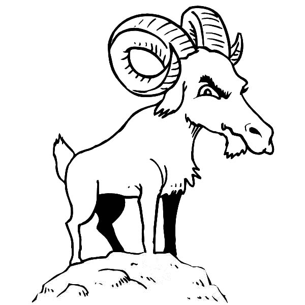 Mountain Goat, : Mountain Goat is not Happy Coloring Pages