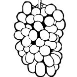Grapes, Picture Of Grapes Coloring Pages: Picture of Grapes Coloring Pages