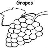 Grapes, Planting Grapes Coloring Pages: Planting Grapes Coloring Pages