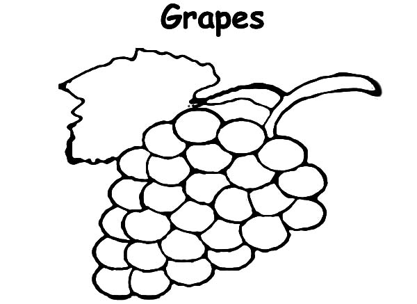 Grapes, : Planting Grapes Coloring Pages