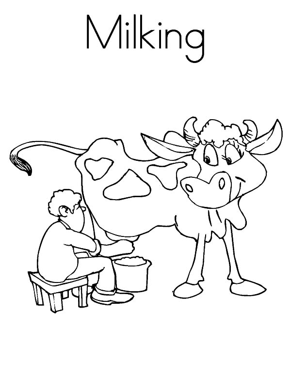 Milking Cow, : Prechooler Milking Cow Coloring Pages