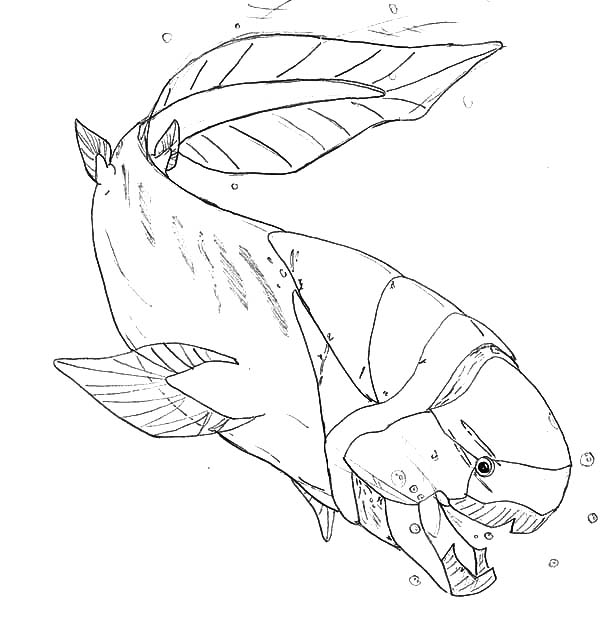 Monster Fish, : Prehistoric Monster Fish Coloring Pages