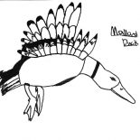 Mallard Duck, Preschool Kid Drawing Mallard Duck Coloring Pages: Preschool Kid Drawing Mallard Duck Coloring Pages