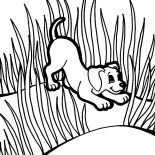 Grass, Puppies Play Between Grass Coloring Pages: Puppies Play Between Grass Coloring Pages