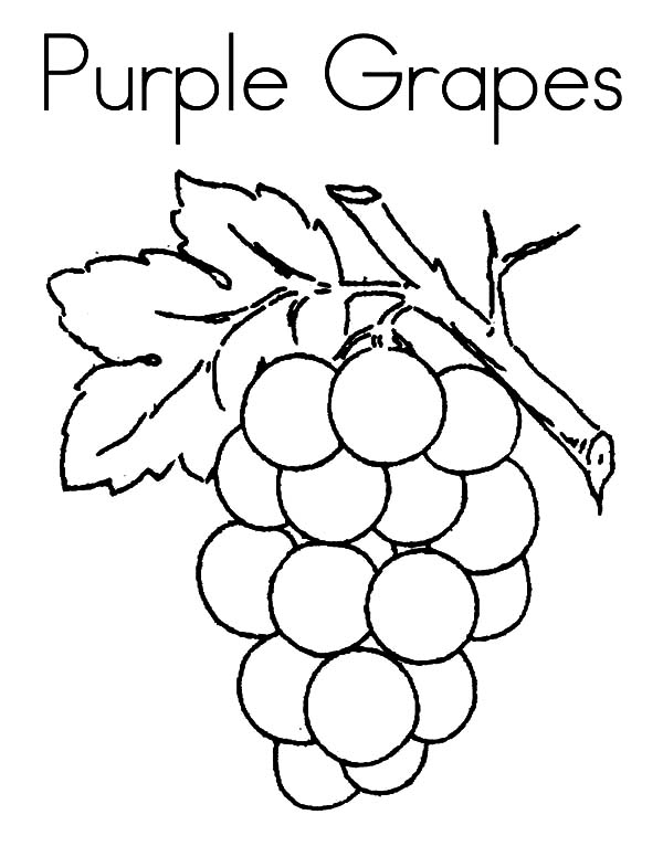 Grapes, : Purple Grapes Coloring Pages