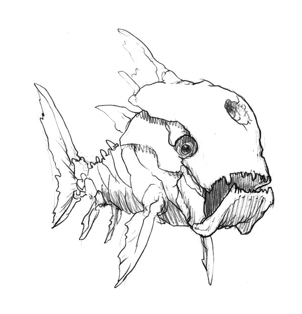 Monster Fish, : Skecthing Ancient Monster Fish Coloring Pages