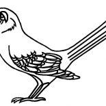 Mockingbird, Tennessee Mockingbird Is Singing Coloring Pages: Tennessee Mockingbird is Singing Coloring Pages