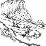Mountain Goat, Two Mountain Goat Relaxing Coloring Pages: Two Mountain Goat Relaxing Coloring Pages