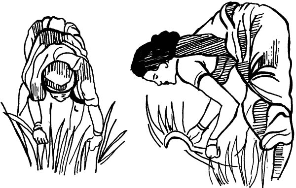 Grass, Two Women Cutting Grass Coloring Pages: Two Women Cutting Grass Coloring Pages