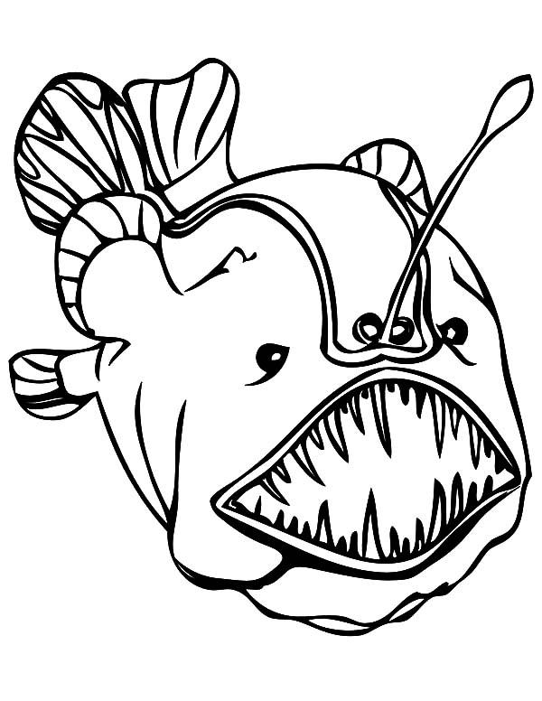Monster Fish, : soccer