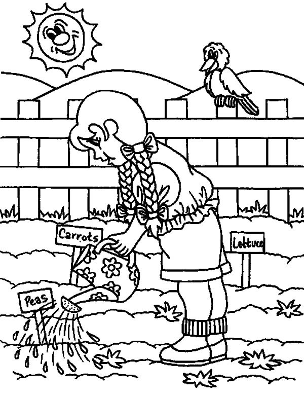 Garden, : Watering Vegetables Garden Coloring Pages