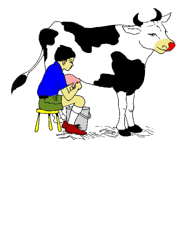 A Boy Milking Cow Coloring Pages by years old Julio K  Rhea