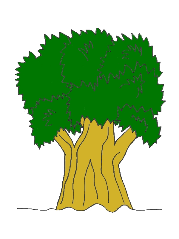 Big Tree Of Nature Coloring Page by years old Oliver L  Gonzalez