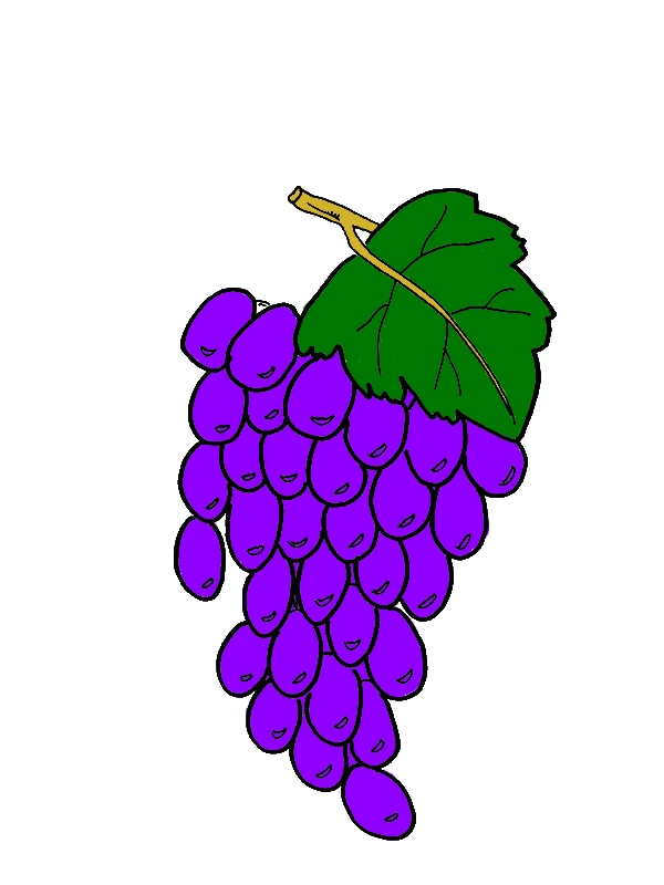 Healthy Fruit Grapes Coloring Pages by years old Kathleen R  Howe