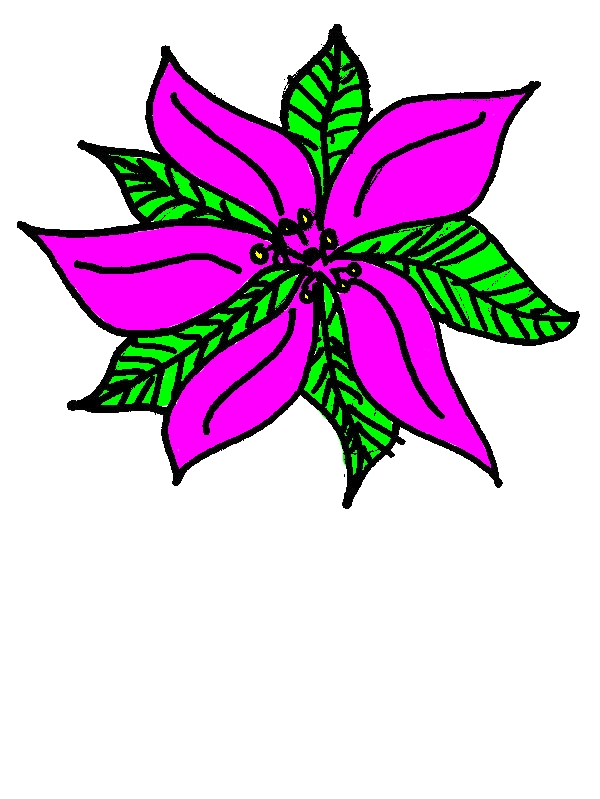 Pretty Poinsettia Picture Coloring Page by years old Jonathan J  Hood