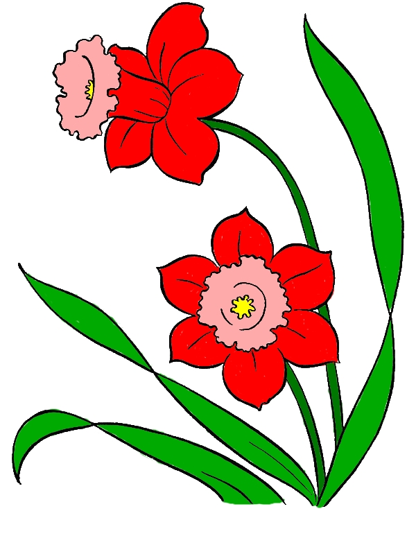 Two Pretty Spring Flower Coloring Page by years old Juan M  Gonzalez